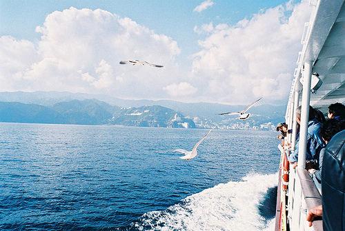 蓝色是我的颜色、蓝色、大海、纯洁、安静