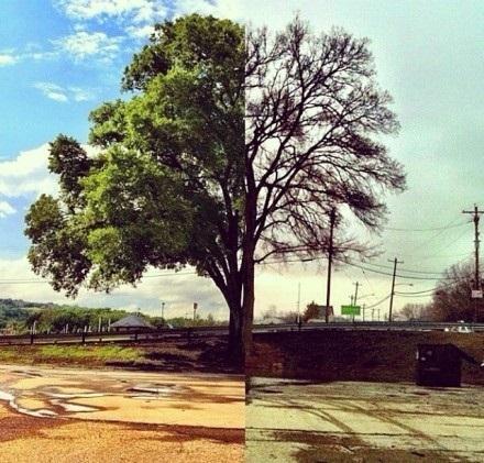 同一个地方,却存在着不同的记忆