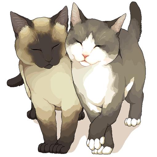 pixiv Ⅱ、pixiv、插画、美、猫